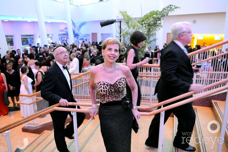 2013 Adrienne Arsht Center Gala