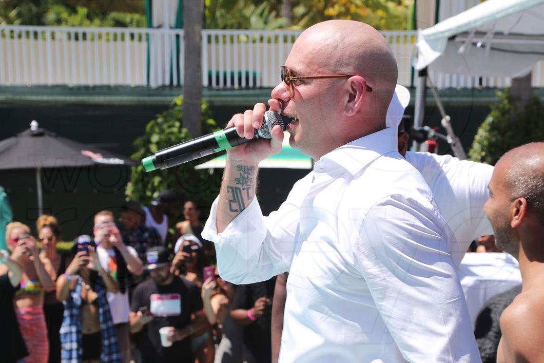 9-Pitbull