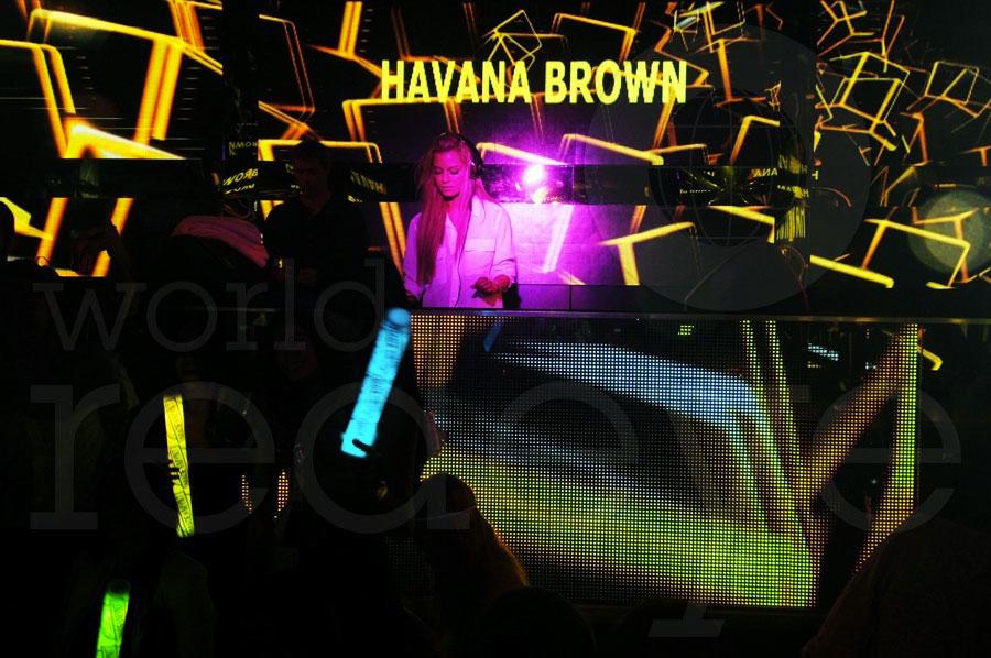 1-Havana-Brown3