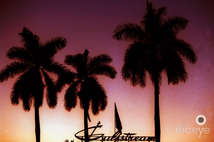 1-Gulfstream Action (8)